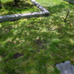 Grassy unmarked area of cemetery